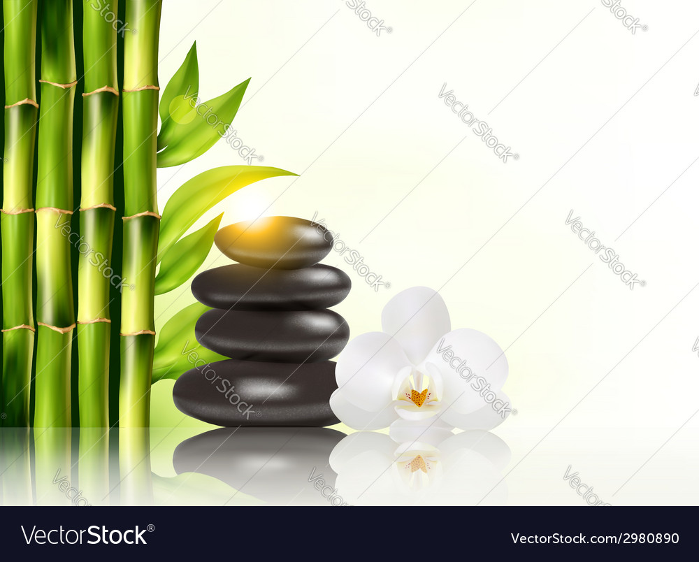 Spa background with bamboo and stones vector   Price: 1 Credit (USD $1)