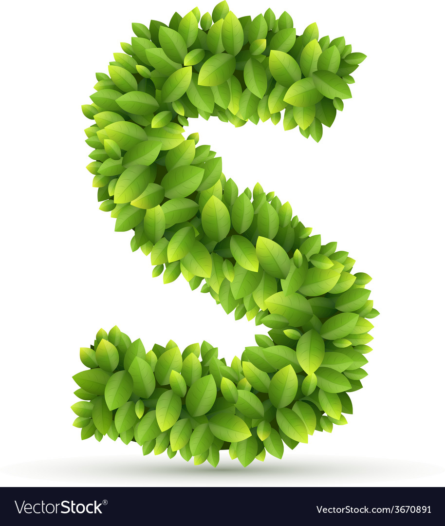 Letter s alphabet of green leaves vector | Price: 1 Credit (USD $1)