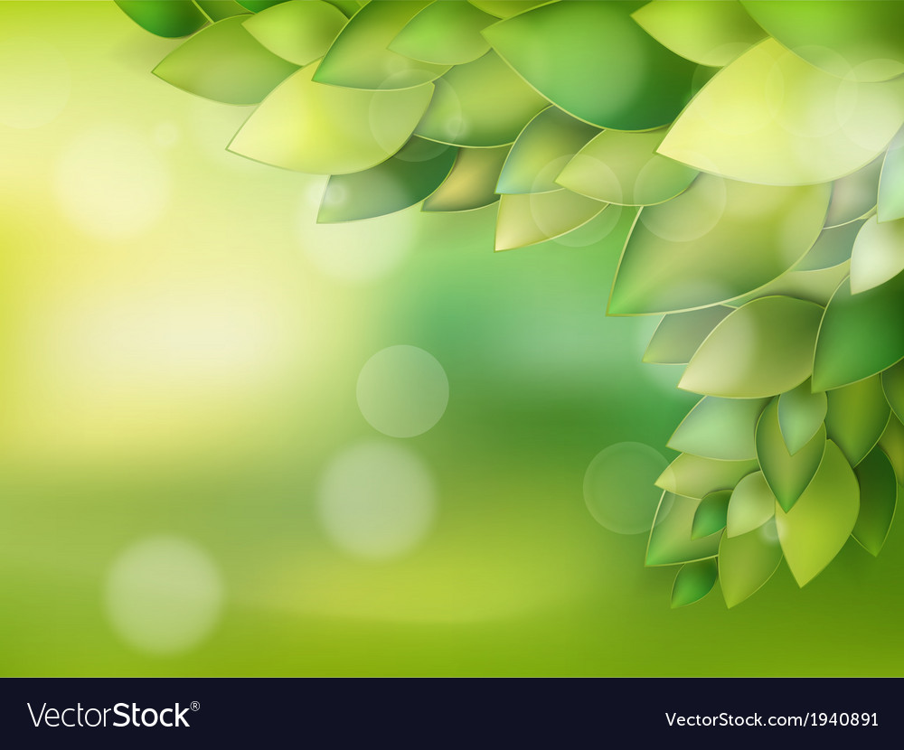 Summer natural backgrounds for your design eps 10 vector | Price: 1 Credit (USD $1)