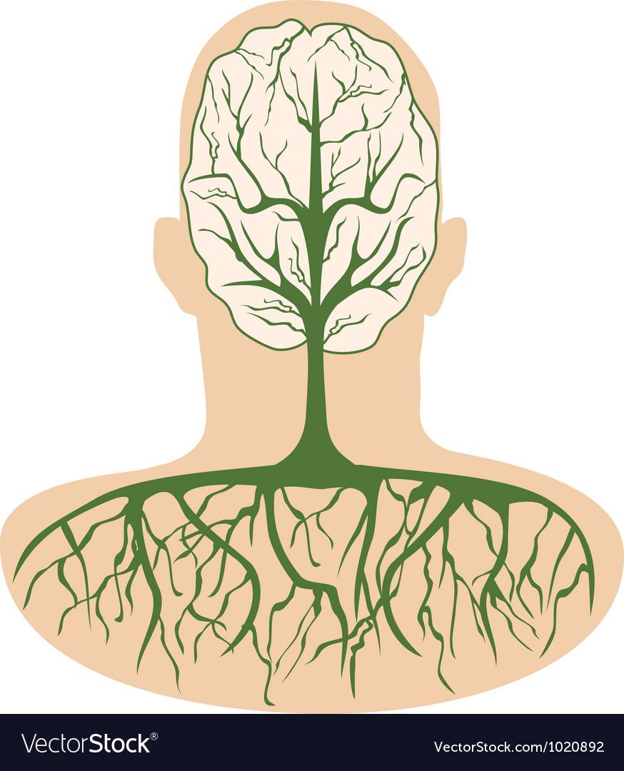 Brain tree vector | Price: 1 Credit (USD $1)