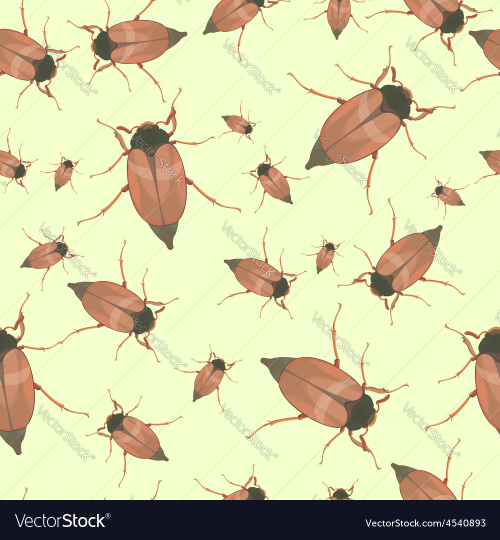 Summer seamless pattern with cockchafers vector | Price: 1 Credit (USD $1)