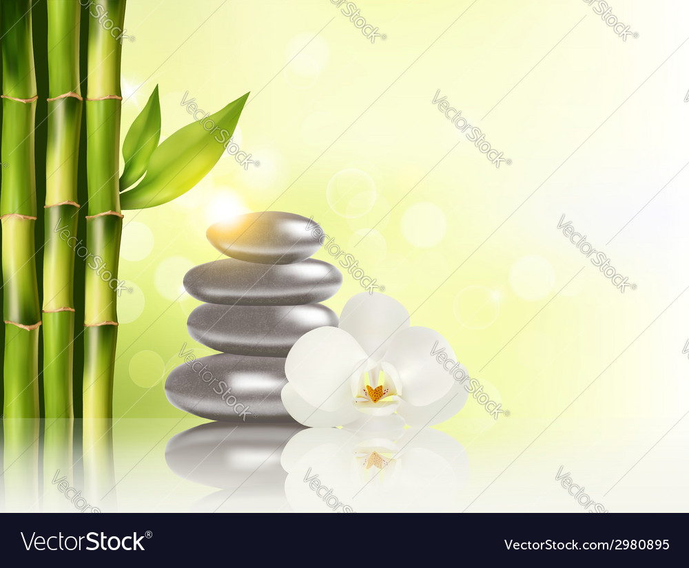 Spa background with bamboo and stones vector | Price: 1 Credit (USD $1)