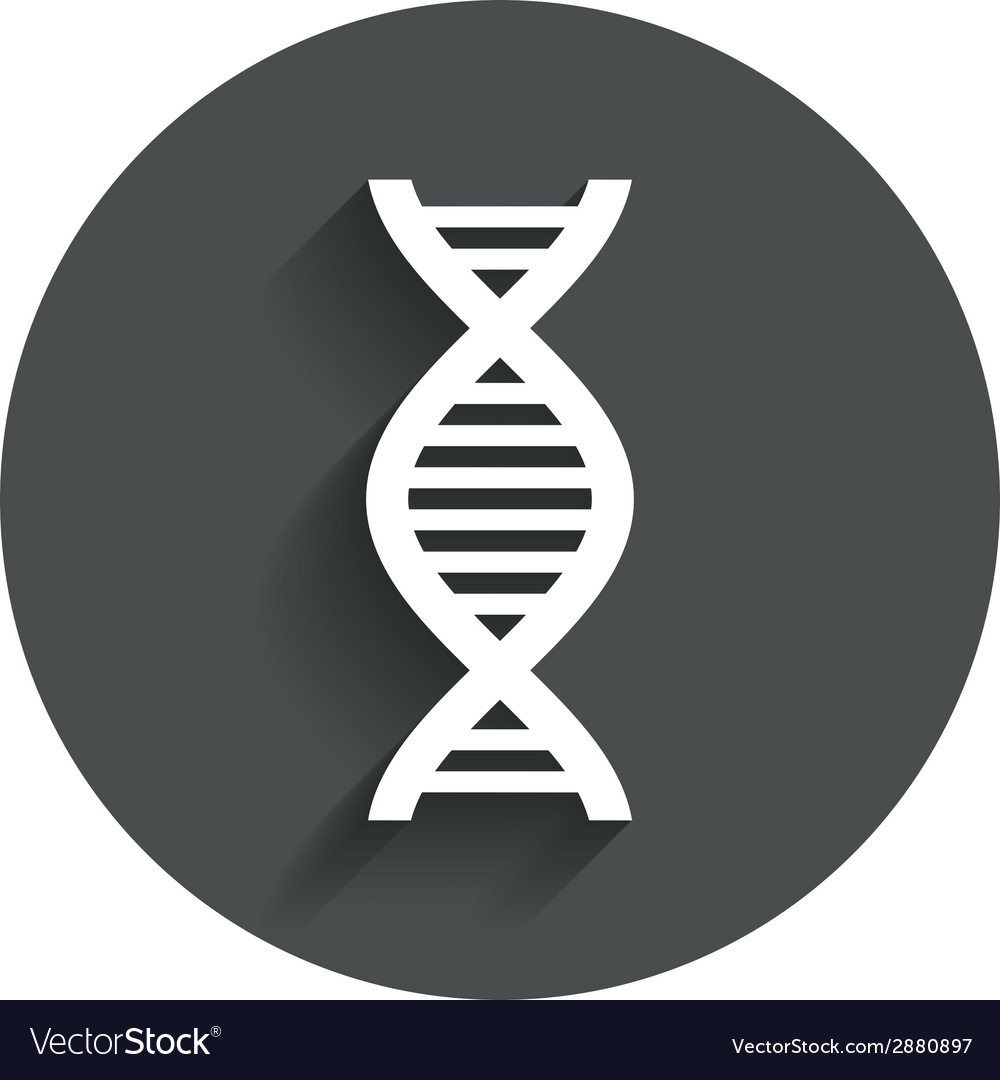 Dna sign icon deoxyribonucleic acid symbol vector | Price: 1 Credit (USD $1)