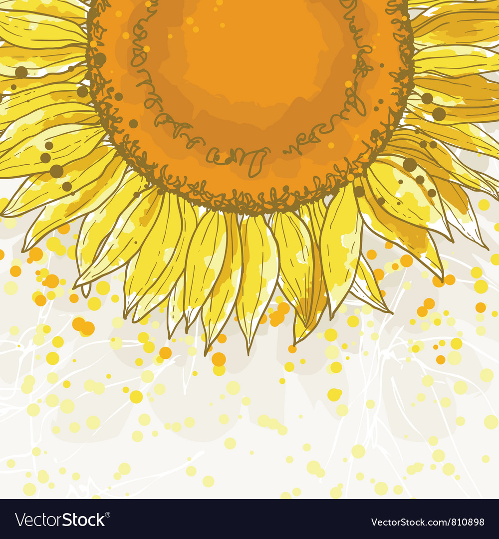 The square frame with sunflowers vector | Price: 1 Credit (USD $1)