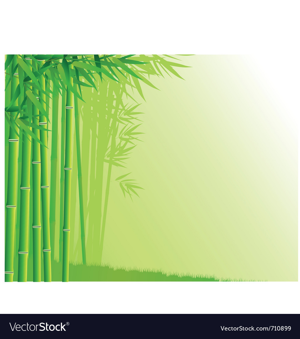 Bamboo tree background vector | Price: 1 Credit (USD $1)