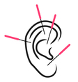 Ear acupuncture vector