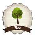 Tree design vector