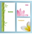 Exotic tropical flowers invitation card layout vector