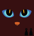 Cat eye on a dark background vector