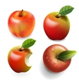 Set of red ripe apples four various view vector