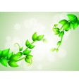 Green branches background vector