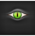 Dark background with animal eye vector