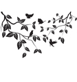 Leaves and birds vector