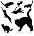 Cat black silhouettes vector