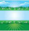 Summer landscape banner vector