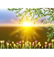 Spring landscape with tulip flowers eps 10 vector