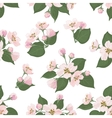Seamless floral pattern apple tree flowers vector
