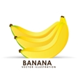 Banana cluster vector