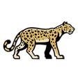 Majestic leopard mascot vector