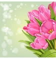 Background of pink tulips vector