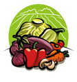 Vegetable harvest vector