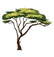 African tree vector