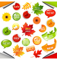 Autumn collection sale elements with leaves vector