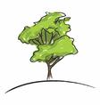 Big tree drawing vector