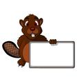 Beaver cartoon with blank sign vector