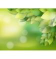 Summer natural backgrounds for your design eps 10 vector