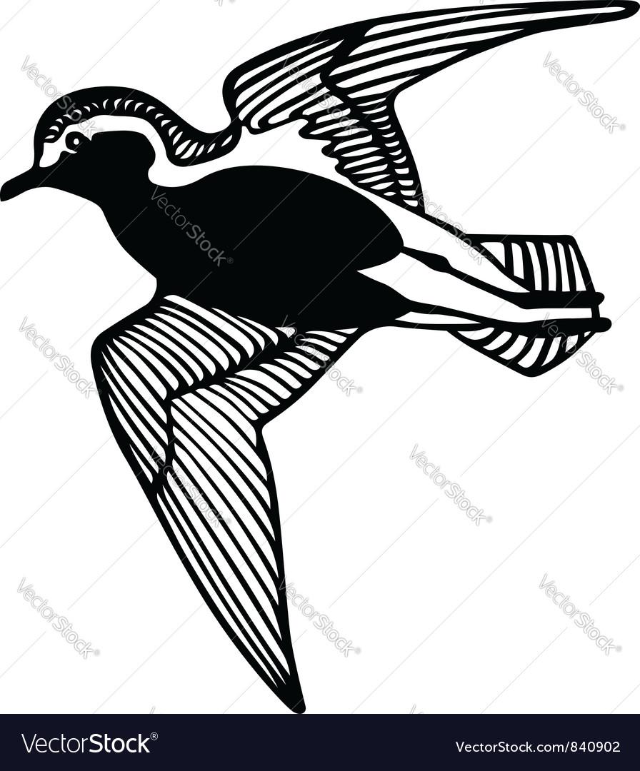Flying bird vector | Price: 1 Credit (USD $1)