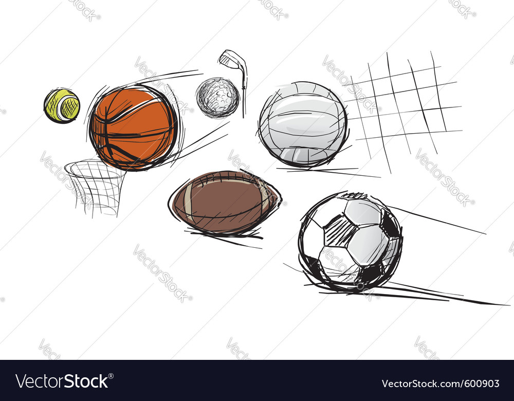 Sport ball sketches vector