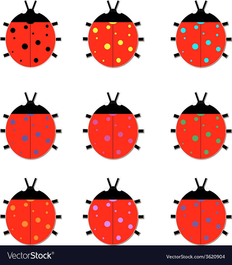 Set of colorful ladybird vector | Price: 1 Credit (USD $1)