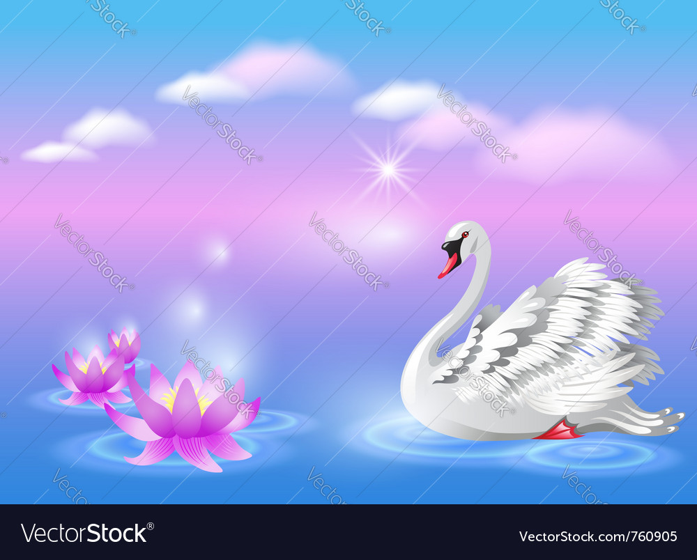 Elegant white swan vector | Price: 1 Credit (USD $1)