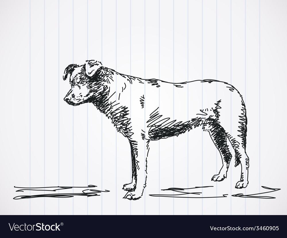 Sketch of dog vector   Price: 1 Credit (USD $1)