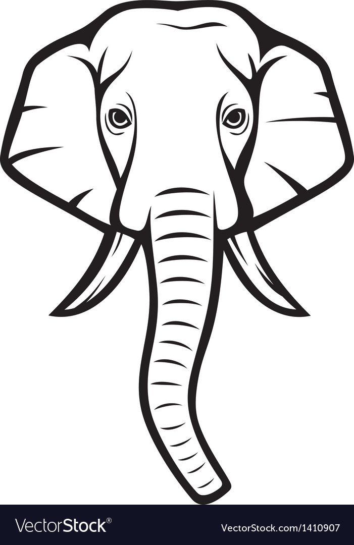 Elephant head vector | Price: 1 Credit (USD $1)