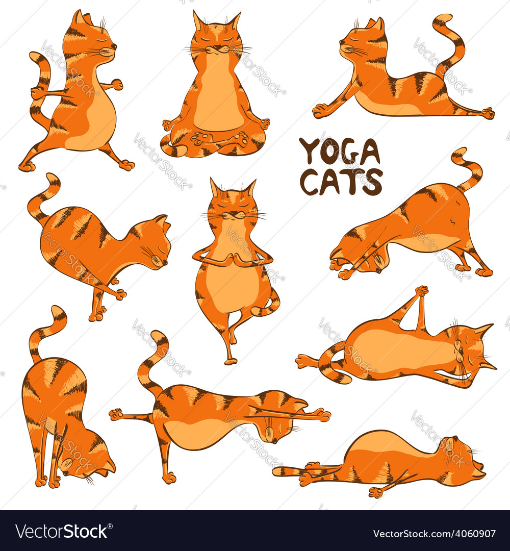 Funny red cat doing yoga position vector | Price: 1 Credit (USD $1)