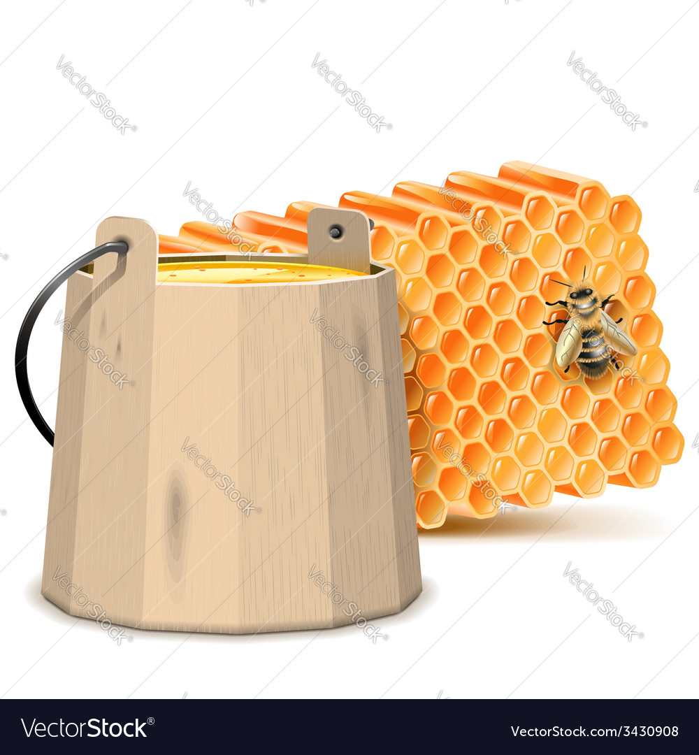 Barrel with honeycombs vector | Price: 1 Credit (USD $1)