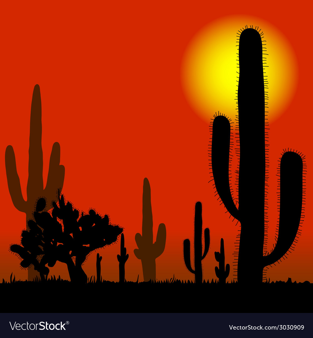 Cactus in desert vector | Price: 1 Credit (USD $1)