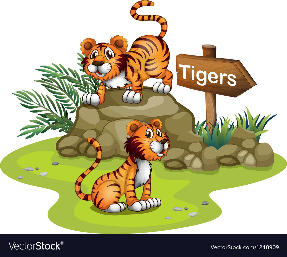 Two tigers with a wooden arrow board vector | Price: 1 Credit (USD $1)