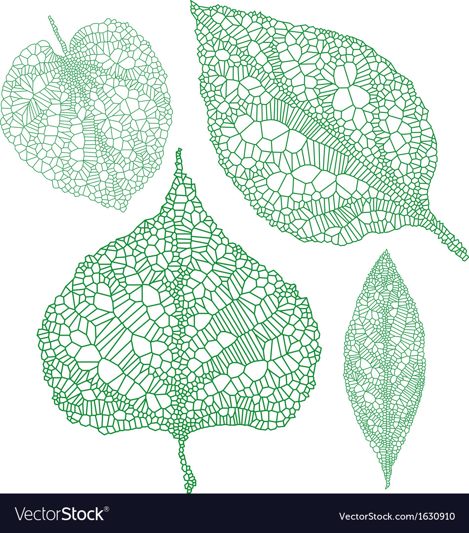 Green leaf silhouettes set vector
