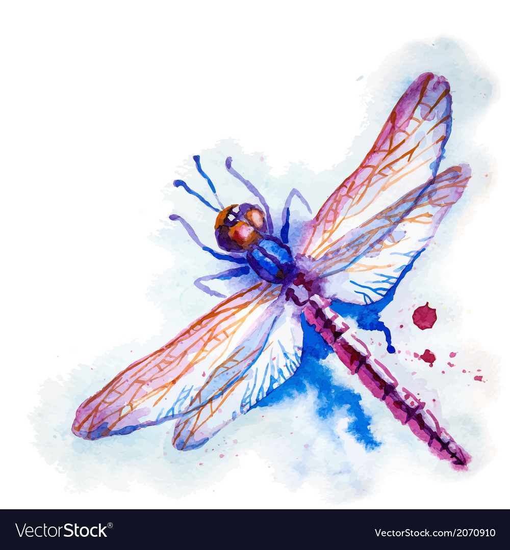 Purple watercolor dragonfly vector | Price: 1 Credit (USD $1)