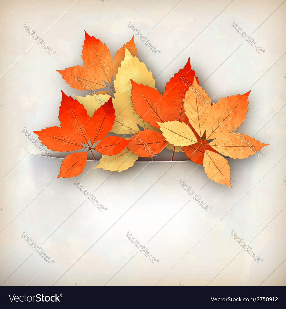 Autumn fall leaves vector | Price: 1 Credit (USD $1)