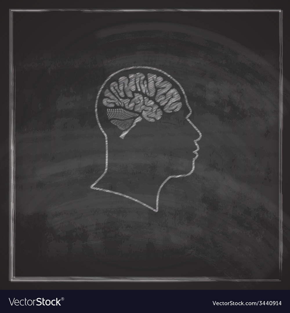 Vintage of human head with brain on blackboard vector | Price: 1 Credit (USD $1)