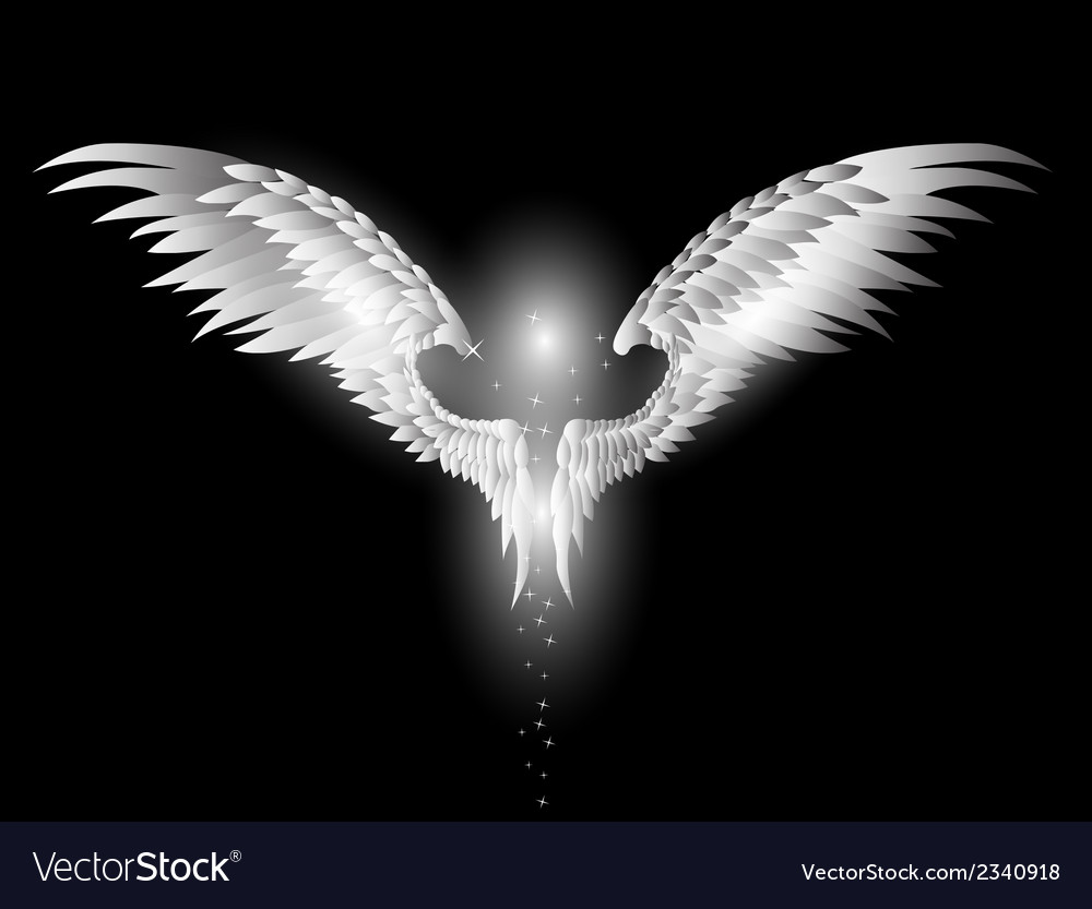Angel wings on dark background vector | Price: 1 Credit (USD $1)