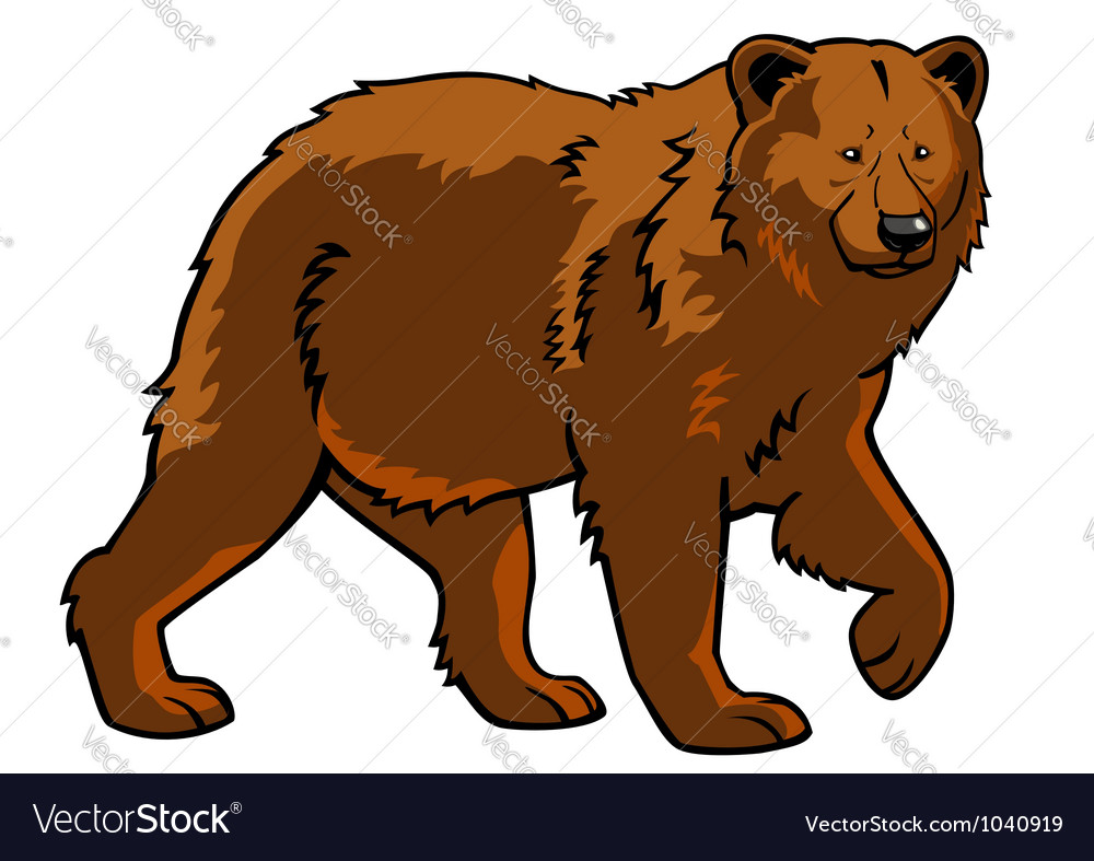 Brown bear vector | Price: 1 Credit (USD $1)