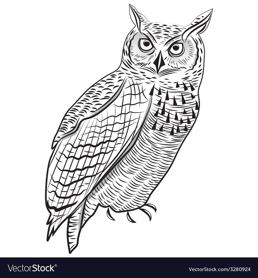 Owl bird as halloween symbol vector   Price: 1 Credit (USD $1)