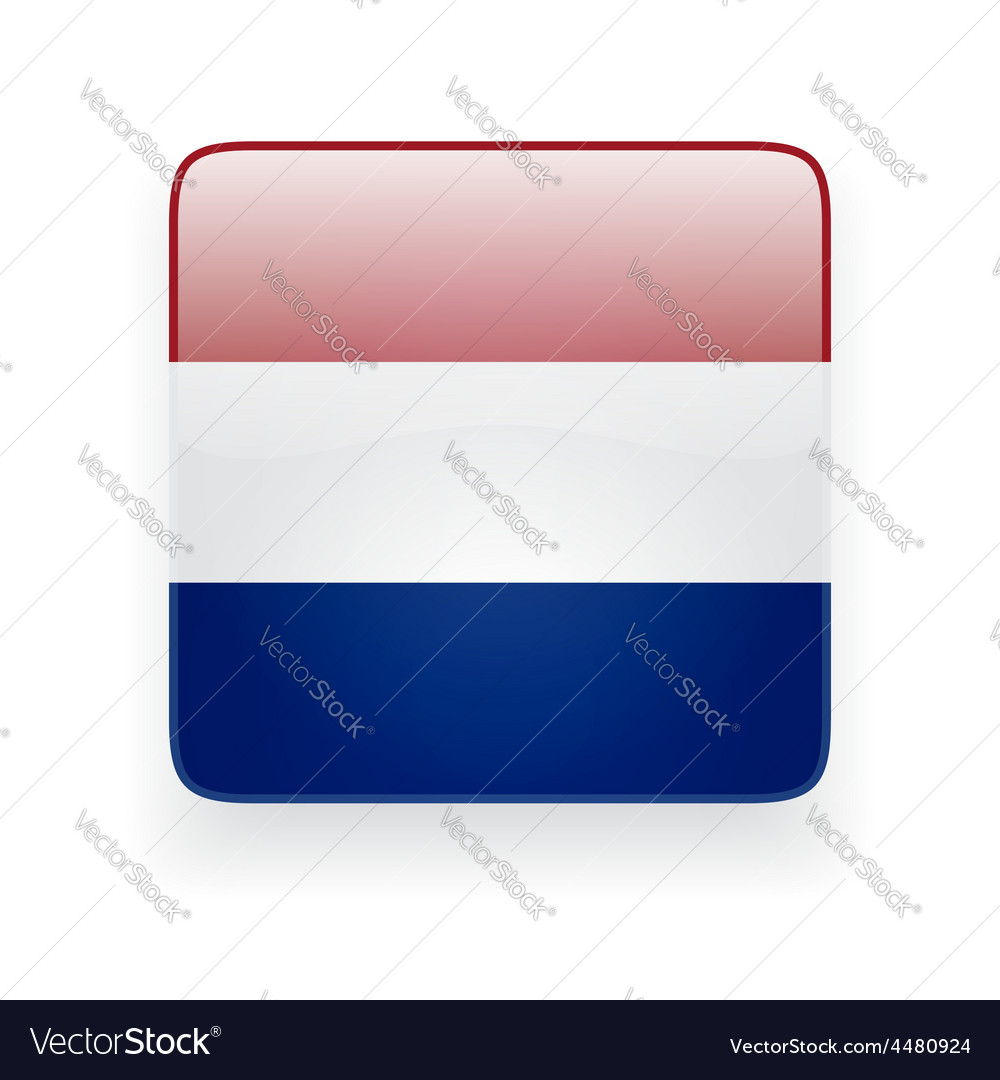 Square icon with flag of netherlands vector | Price: 1 Credit (USD $1)