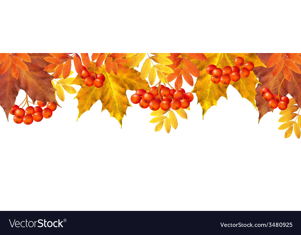 Autumn border with leaves vector | Price: 1 Credit (USD $1)