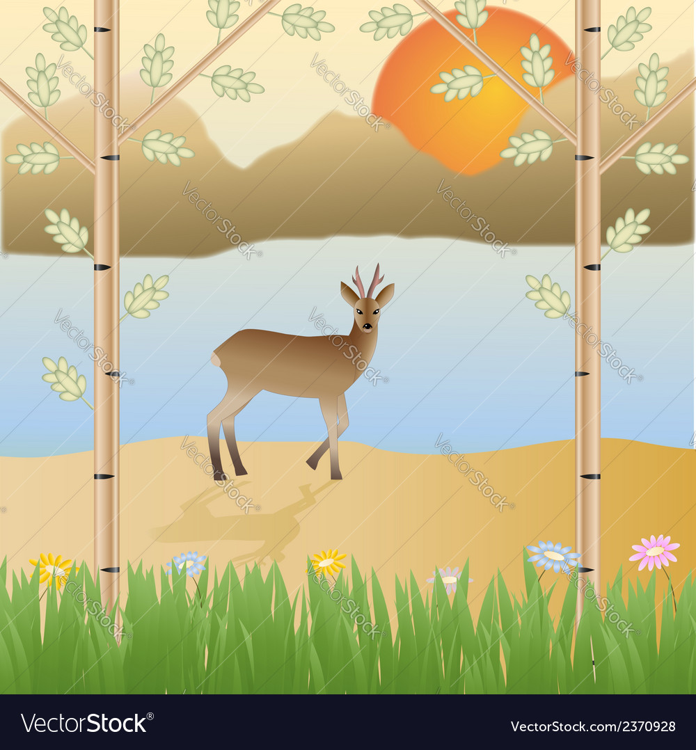 Roe deer in the wild mountains sun flowers vector | Price: 1 Credit (USD $1)